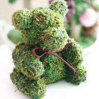 Moss Teddy Bear