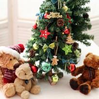 자이 문화 클래스 - Christmas Mini TreeⅡ