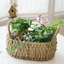 Country Style Mini Garden